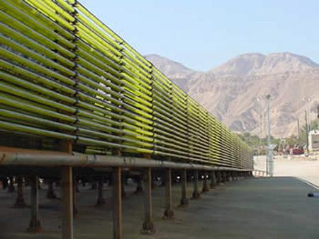 Producción de biocombustible a partir de algas