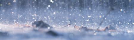 Las lluvias, el comportamiento humano y los economistas