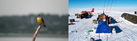 Prats-Gil (Paraguay) - Estación Vostok (Antártida)
