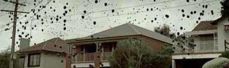 Los globos negros de CO2