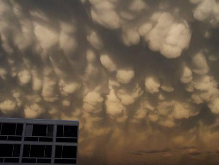 Nubes mammatus
