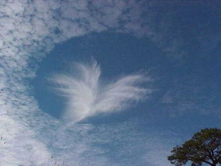 Ojo en el cielo