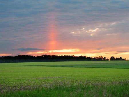 Columna de sol en Ontario, Canadá - Foto: Rick Harris