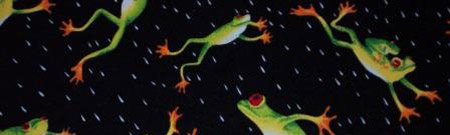 Lluvia de ranas