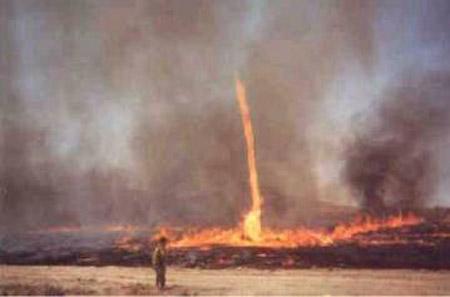 Remolino de fuego, durante un incendio forestal