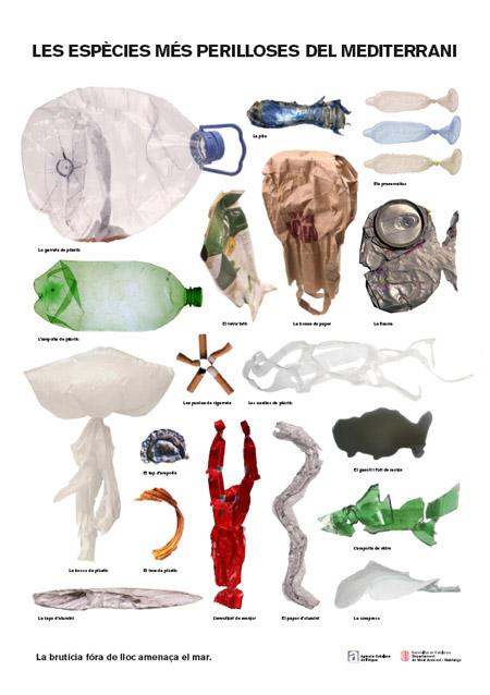 Las especies más peligrosas del Mar Mediterráneo
