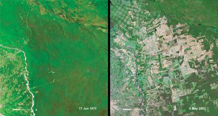 Santa Cruz de la Sierra, Bolivia (1975-2003)