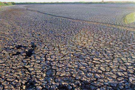 Sequía en la laguna de Chascomús