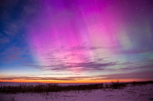 Auroras 5