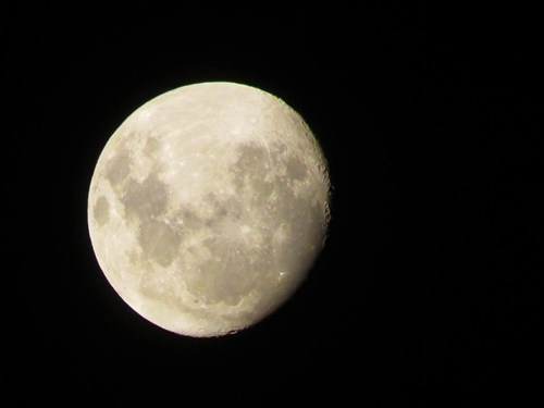 Luna-L