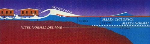 Marejada 5