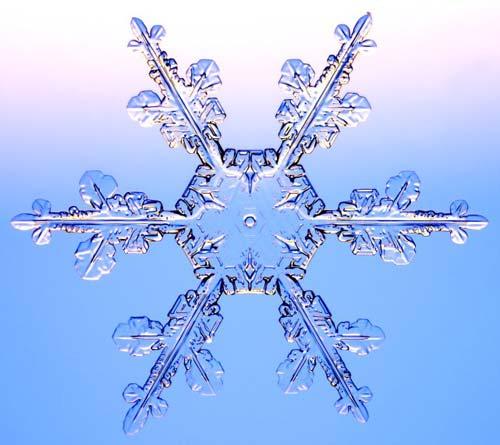 copo-nieve3