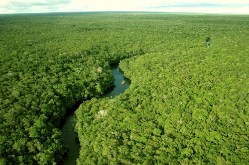 Amazonas 3