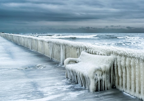 Edad hielo 5