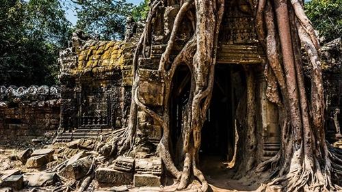 Templo 8