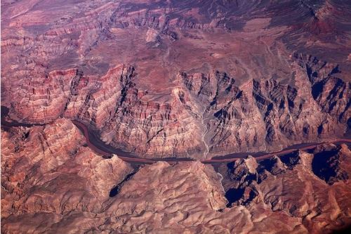 Arizona 8