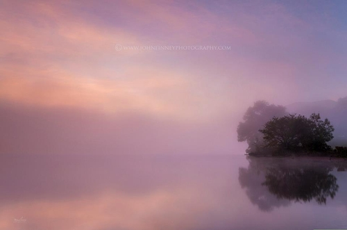 Niebla 6