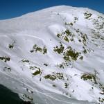 Nieve L