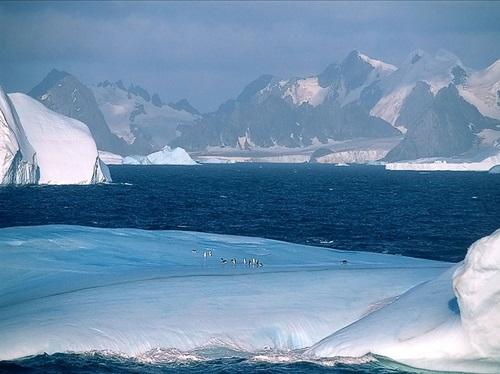Marino hielo