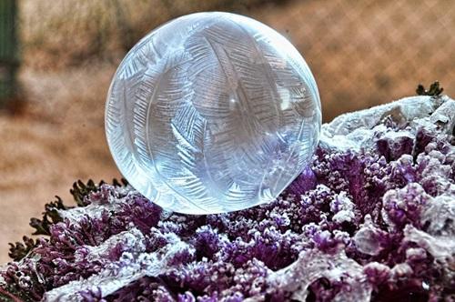 Burbuja congelada