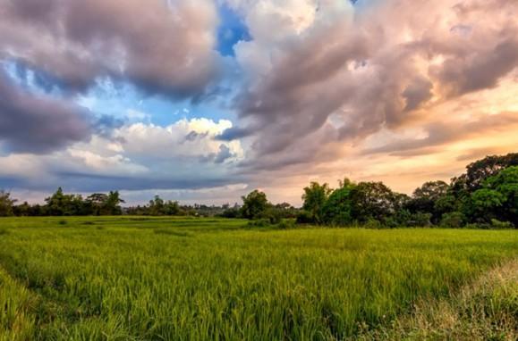 Sol y campo , tiempo inestable