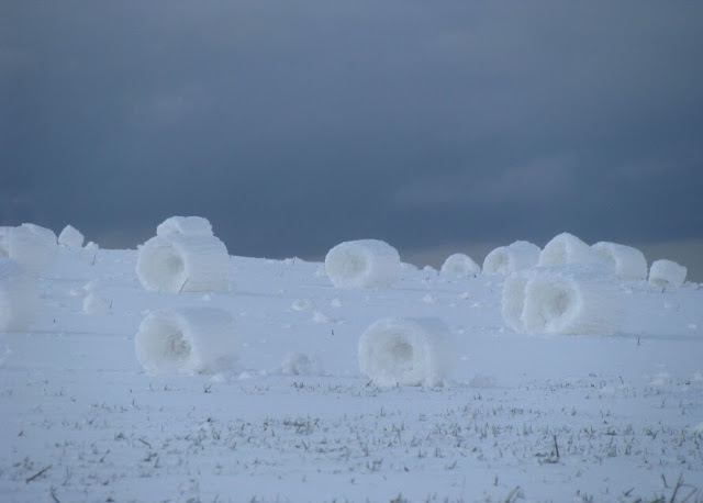 rollos de nieve cilindros de nieve 8