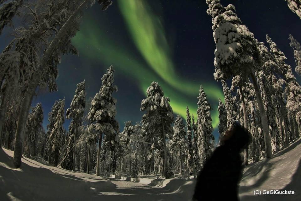 Auroras y nieve