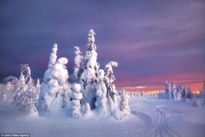 Lugares nevados