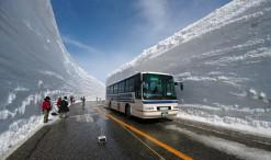 Ruta y nieve