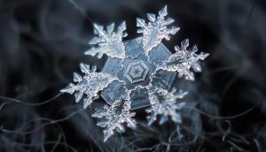 Cristal de hielo 1