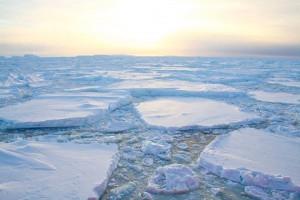 Hielo antartico