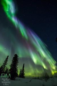 Auroras 18 de marzo