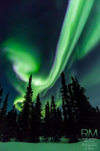 Auroras 18 de marzo 4