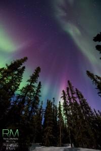 Auroras en el artico