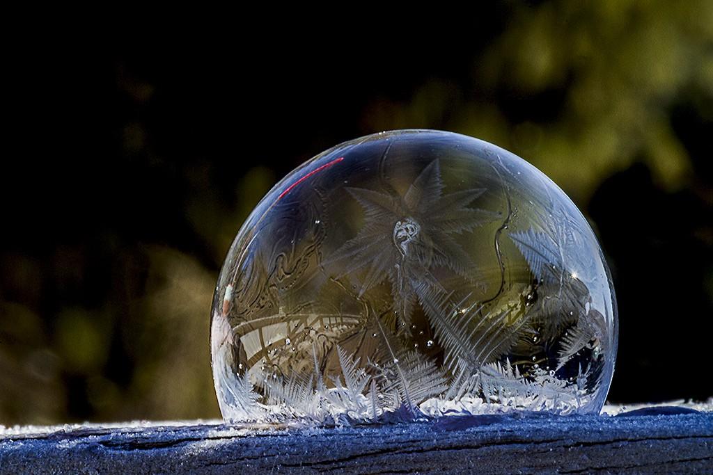 Burbujas congeladas 1
