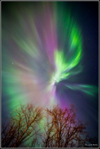 Fotos de Auroras
