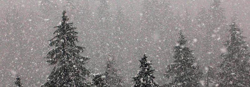 Nieve en cordilleras