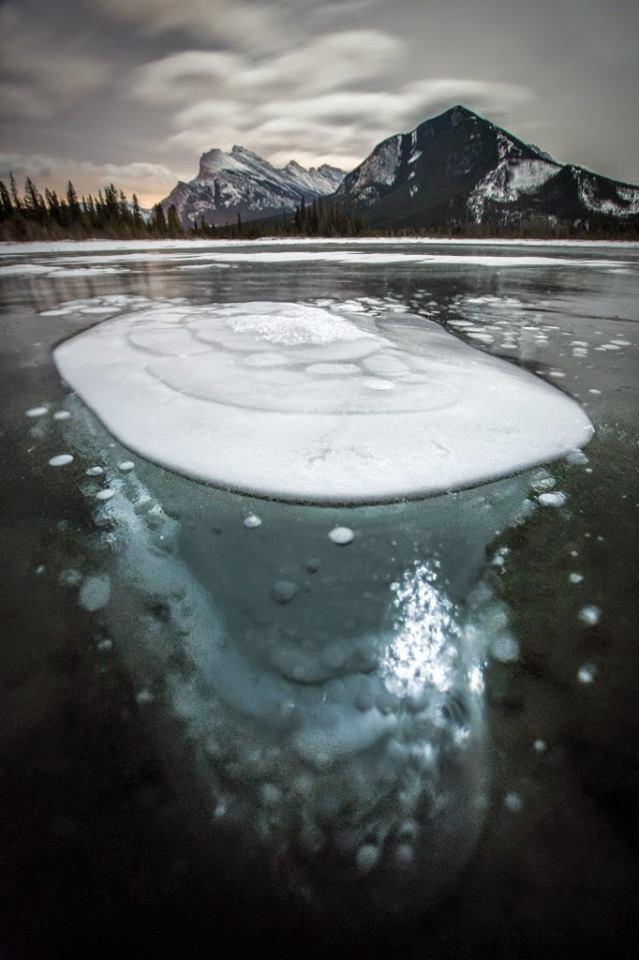Burbujas congeladas - copia