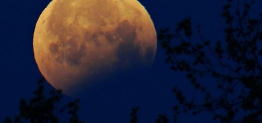 Eclipse 5
