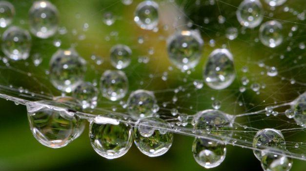Lluvia en gota