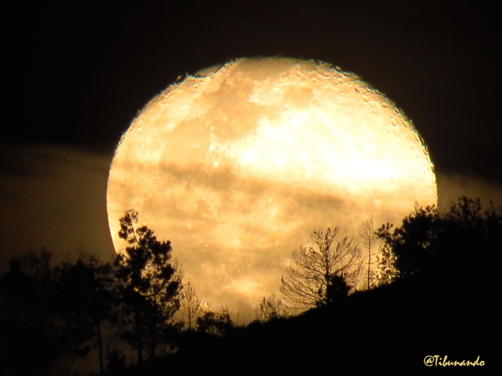 Luna caracas
