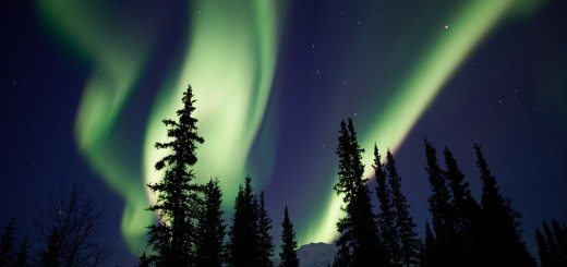Noche de Auroras