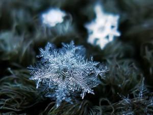 copos-de-nieve-02