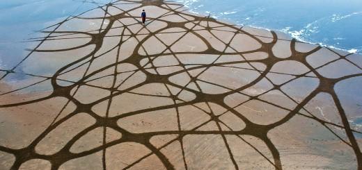Dibujos en las Playas de San Francisco 1