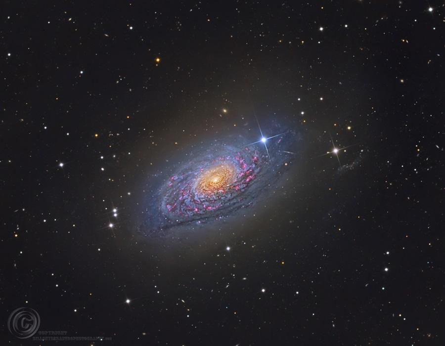 La galaxia del Girasol