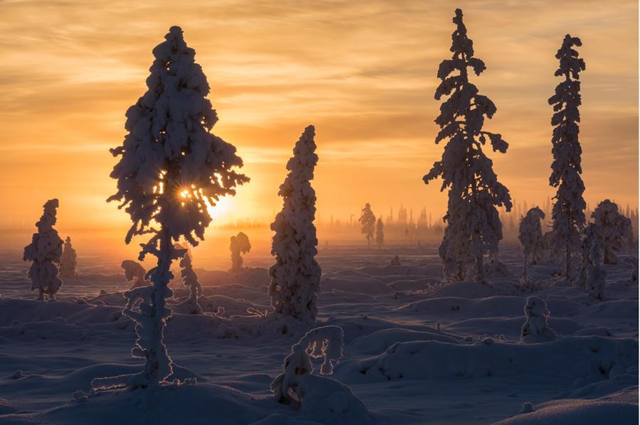 Laponia de Finlandia 1