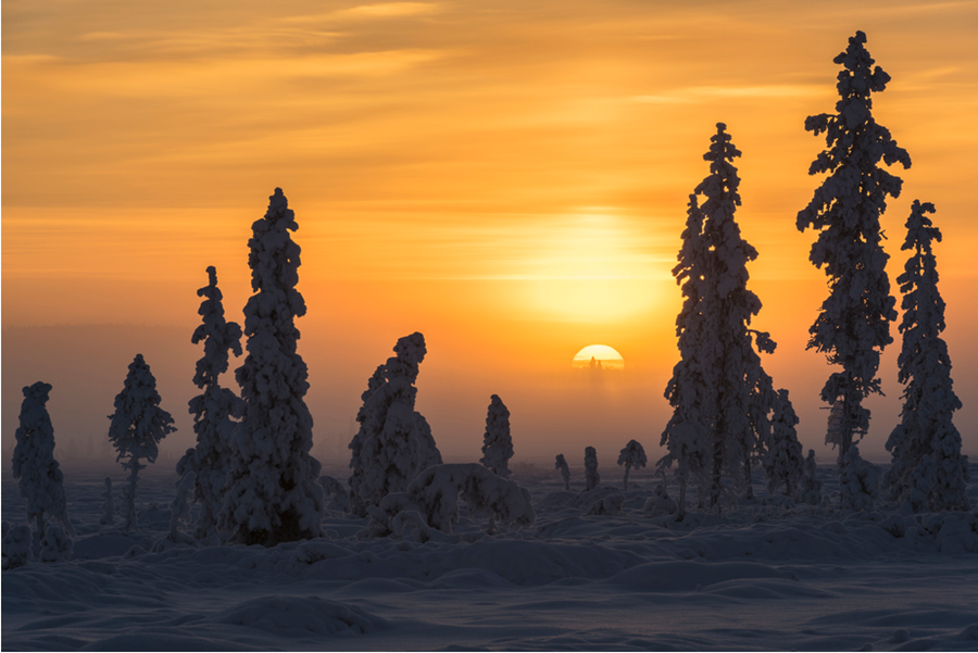 Laponia de Finlandia 4