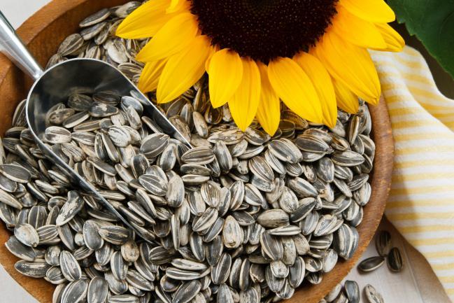 semillas de giras