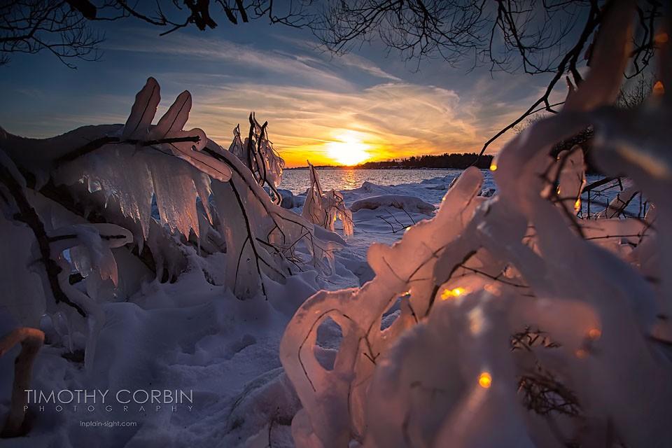 Congelado 2