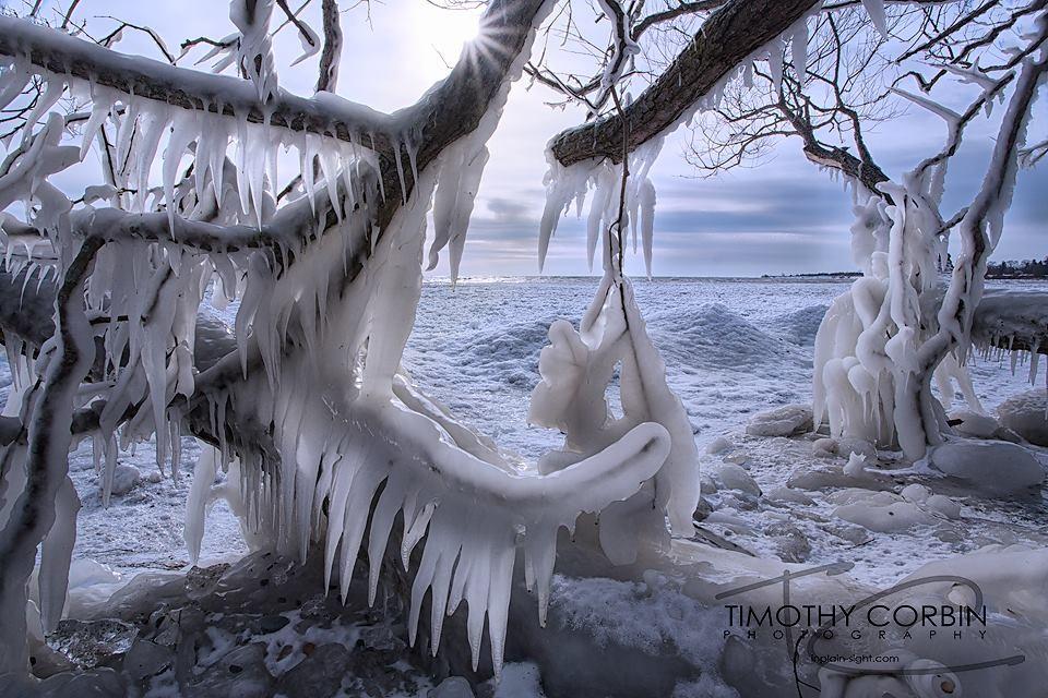 Congelado 3